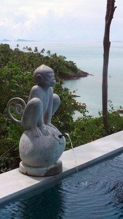 Four Seasons Resort Koh Samui Thailand: Monkey by the pool