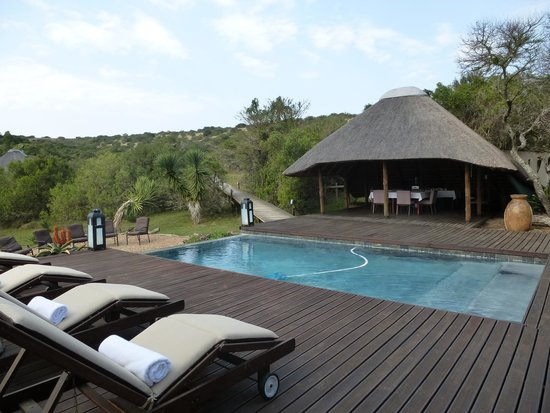 Bukela Game Lodge: Pool outside reception area