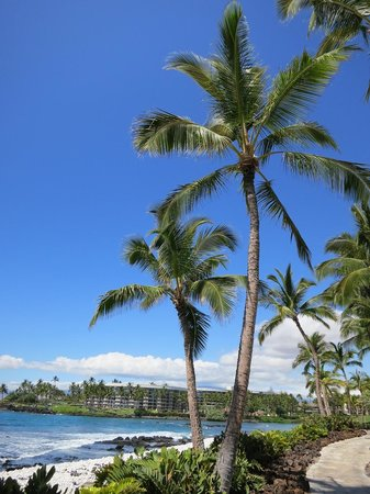 Hilton Waikoloa Village: ラグーンプール近くの景色