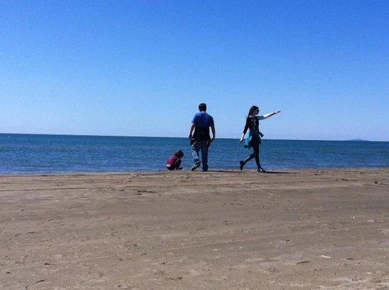 Espiguette Beach: playa