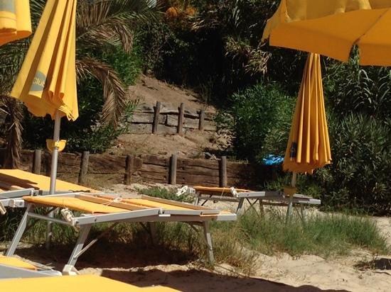 The Free Beach Club : spiaggia albergo: poca manutenzione