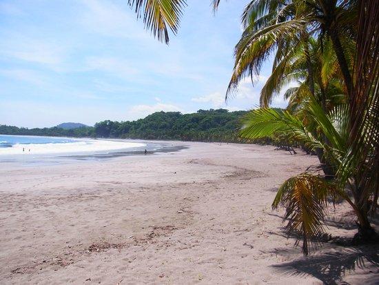 El Colibri Cabinas: Playa Carillo