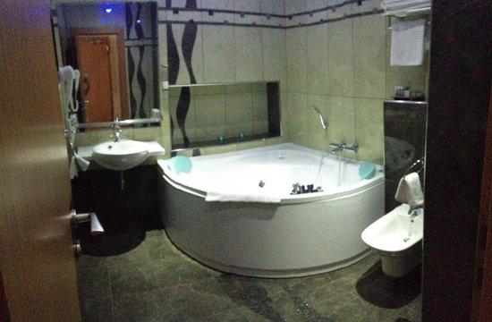 Hotel Danubia Gate Bratislava: amazing bathroom