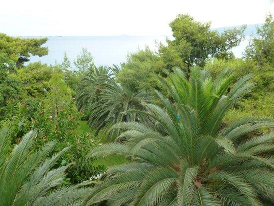 Hotel King Saron : Vue sur le magnifique jardin