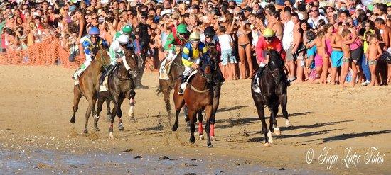 Hotel Guadalquivir: La carreras de caballos.
