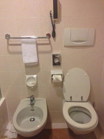 Starhotels Metropole: Туалет