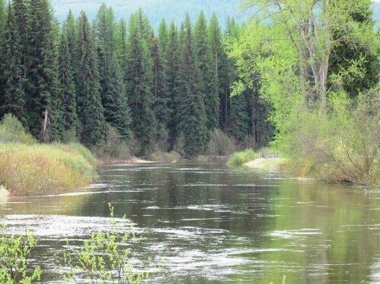 Yaak Rver: Yaak River in Yaak