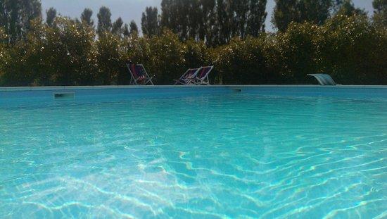 Il Boschetto: la piscina del Boschetto!