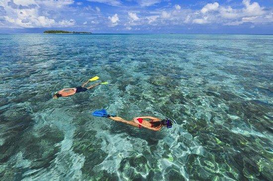 Kurumba Maldives: Beach