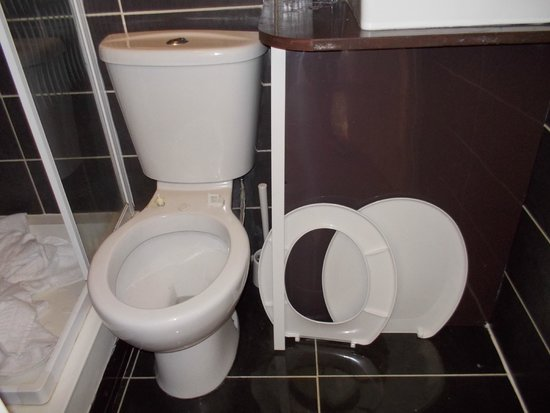 Mayfair Hotel: Toilet room 8 squashed between sink and shower cubicle