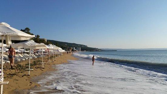 Melia Grand Hermitage: Beach