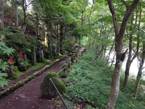 Turtle Inn Nikko: Splendida passeggiata vicino hotel