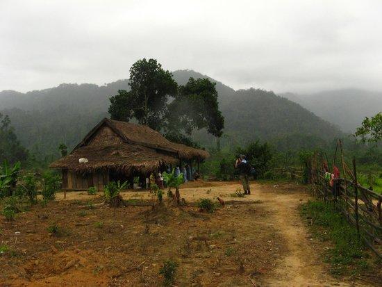 Oxalis Adventures: Throu the jungle  villidge in the jungle