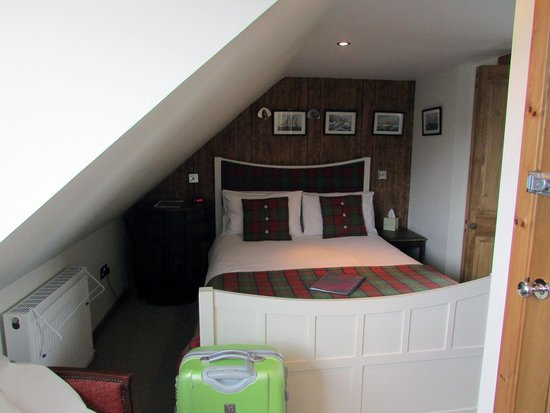 The Island Bear Bed and Breakfast : Rummet