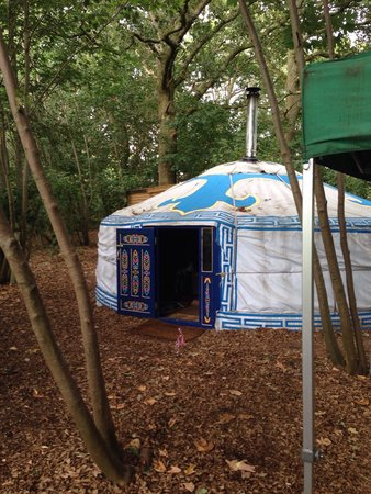 Sopley Lake Yurt Camp : Dragon Yurt II