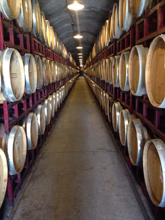 Kunde Family Winery : The cave