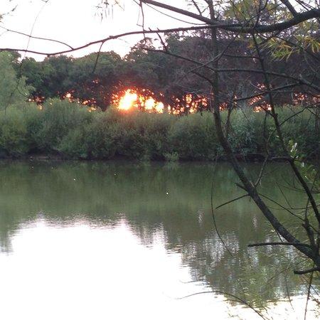 Sopley Lake Yurt Camp : Sunset at Sopley Lake.