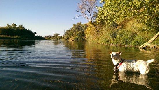 Larkspur Landing Sacramento: american River um die Ecke
