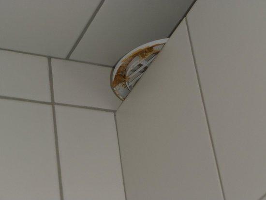 Baltic Hostel: Pokój 2-osobowy z łazienką