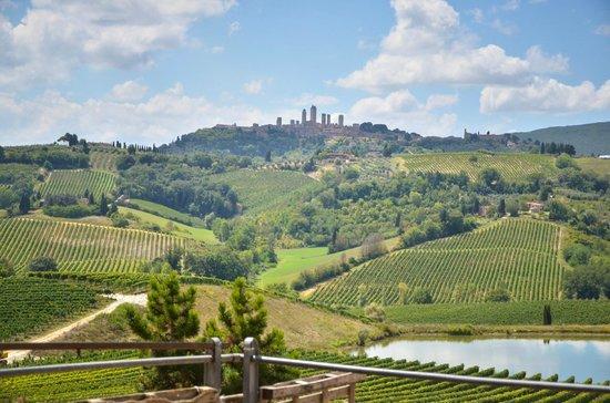 Walkabout Florence Tours : Chianti