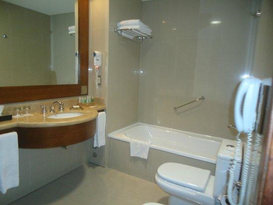Alejandro 1 Hotel Internacional Salta: Baño