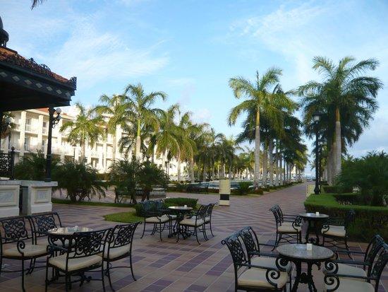 Hotel Riu Palace Riviera Maya: Jardim