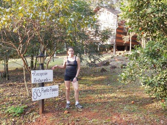 Posada Puerto Paraiso Lodge: parque del lodge con vista de nuestra cabaña