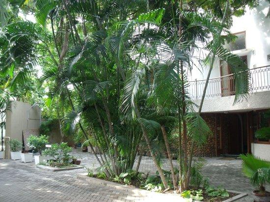 Hanu Reddy Residences Poes Garden : It is an oasis
