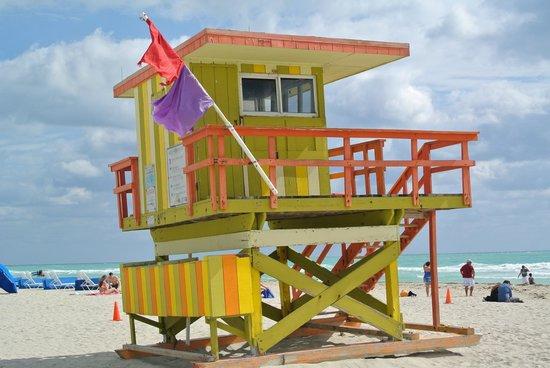South Beach : baywatch