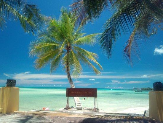 Novotel Samui Resort Chaweng Beach Kandaburi: Beach view
