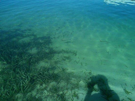 Sol Cayo Largo: Playas