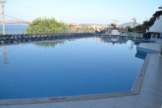 Forever Club : La piscine