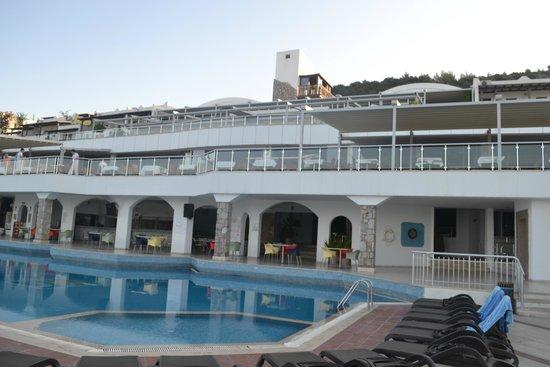 Forever Club : Vue de la piscine