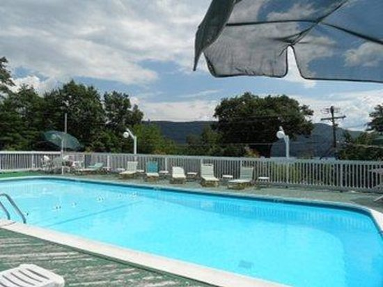 Pinebrook Motel: Outdoor Pool
