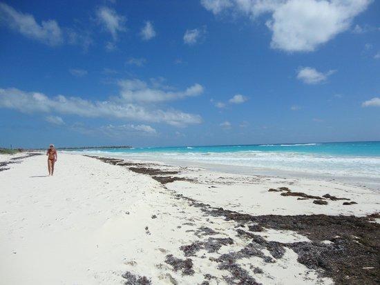 Sol Cayo Largo: Playa del hotel