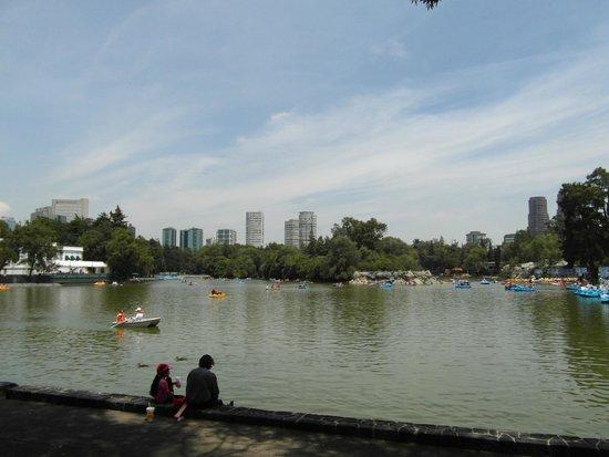 Parque Chapultepec: Park Chapultepec - jeziorp