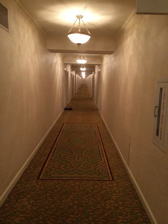 Omni Shoreham Hotel : Horror film