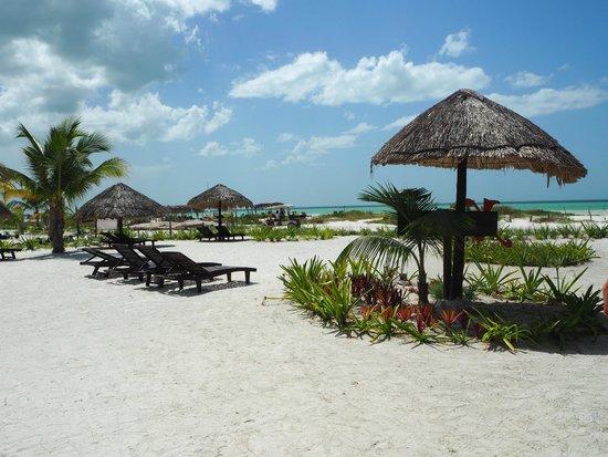 Xaloc Resort: plage devant le resort