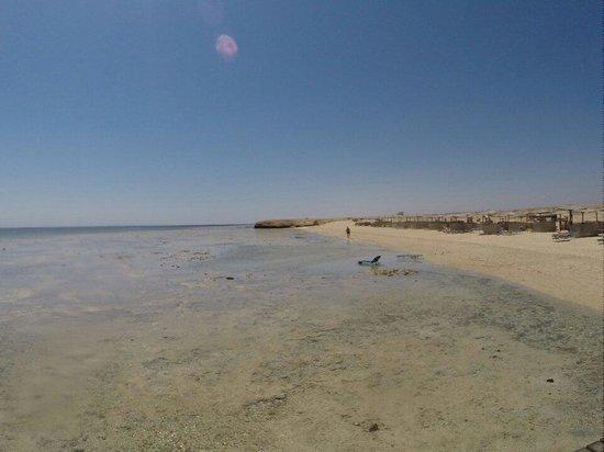 Three Corners Fayrouz Plaza Beach Resort : Spiaggia