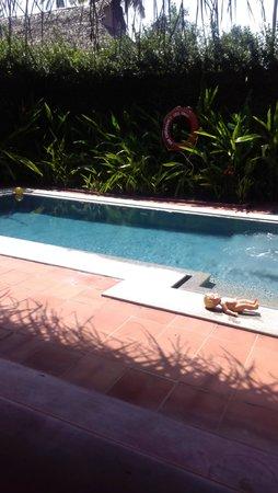 Marari Beach Resort: pool villa