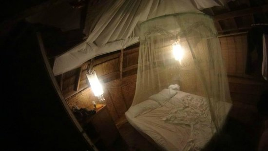 Spider House Resort : Our room
