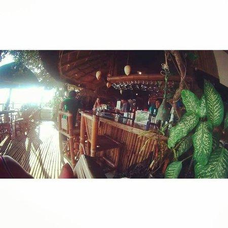 Spider House Resort: The bar