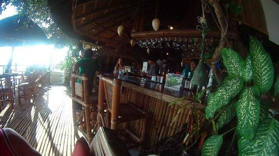 Spider House Resort: bar
