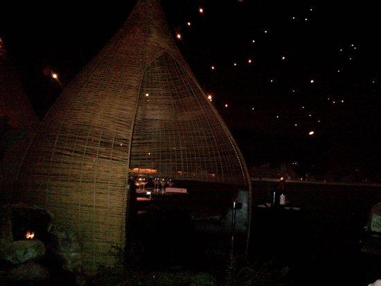 Jardin de Asia Restaurant & Lounge : Inside