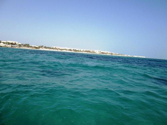 Djerba Sun Club: L'EAU VERTE DE DJERBA