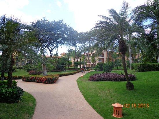 Iberostar Hacienda Dominicus: caminos por el jardin