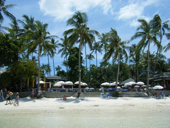 Chaba Cabana Beach Resort : Gezien vanaf de zee