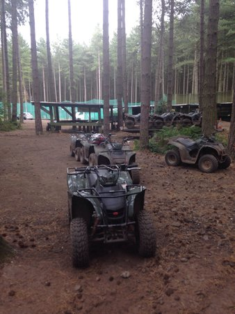 The Adrenalin Jungle: Our 40mins of fun!!