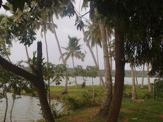 Vishram Village: vue sur le lac