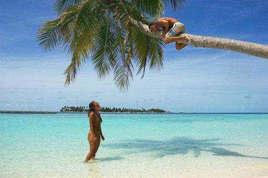 Sun Aqua Vilu Reef : Local Attraction